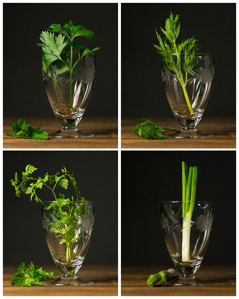 my-everyday-green-salad-with-herbs-7