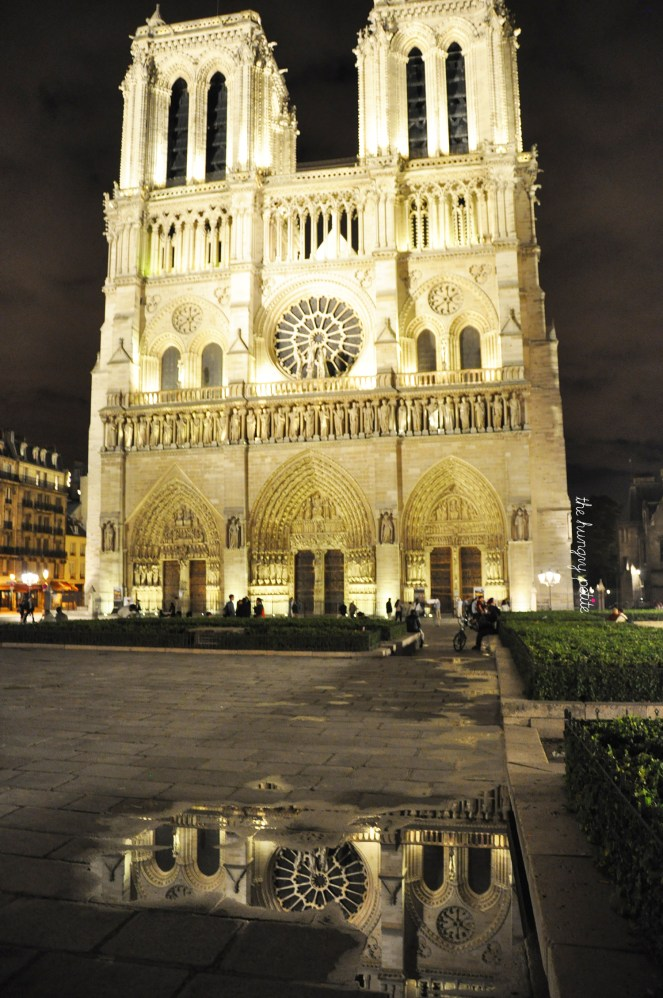 Notre Dame on a rainy night