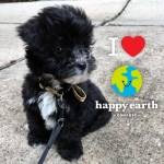 Free month at Happy Earth Compost with code TheHungryPetite4