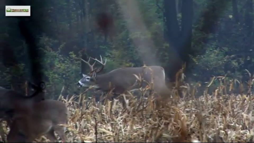Turning Old Farm Equipment Into Diy Deer Blinds The