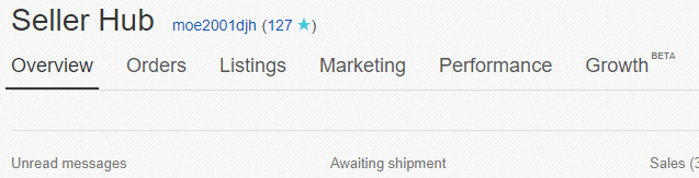 Setting My Personal Ebay Listings On Vacation Mode The Husstle
