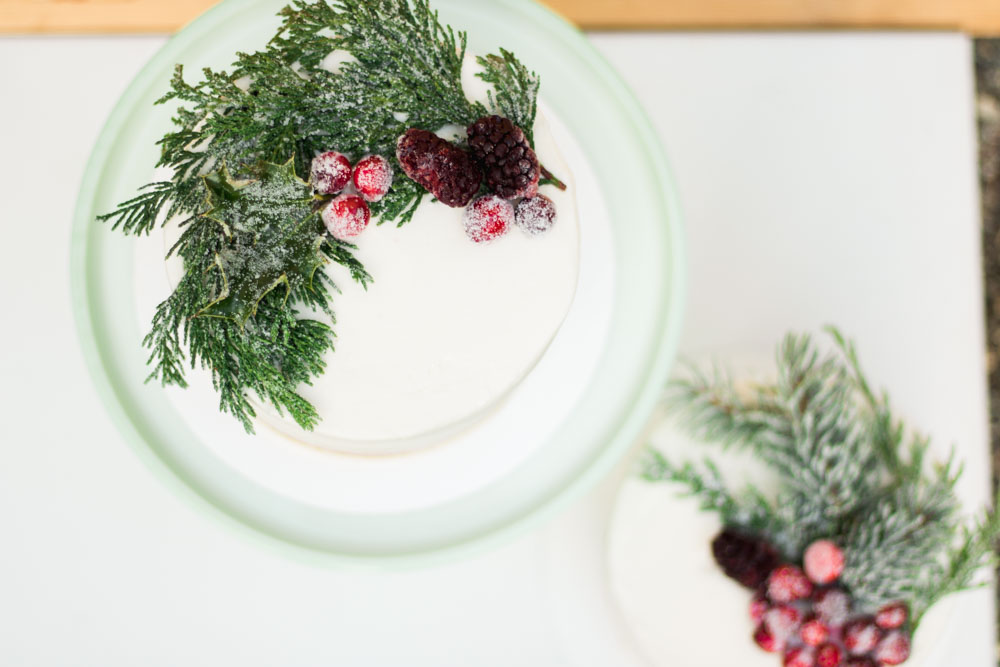 how to sugar cranberries and branches