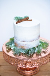 how to make sugared branches and berries for Christmas the hutch oven