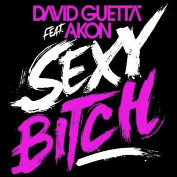david guetta akon mp3 free download