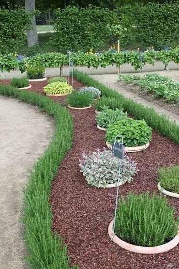 Outdoor Herb Garden Ideas The Idea Room