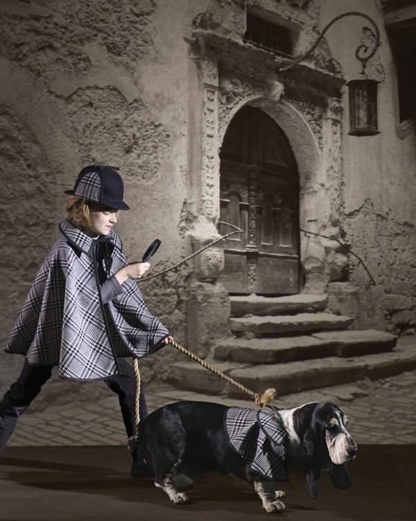 Diy Dog And Cat Costume Ideas - Idea Room