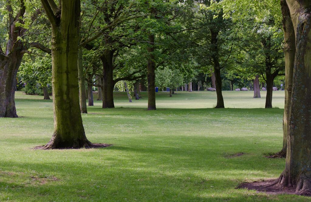 Het Park, parks in Rotterdam