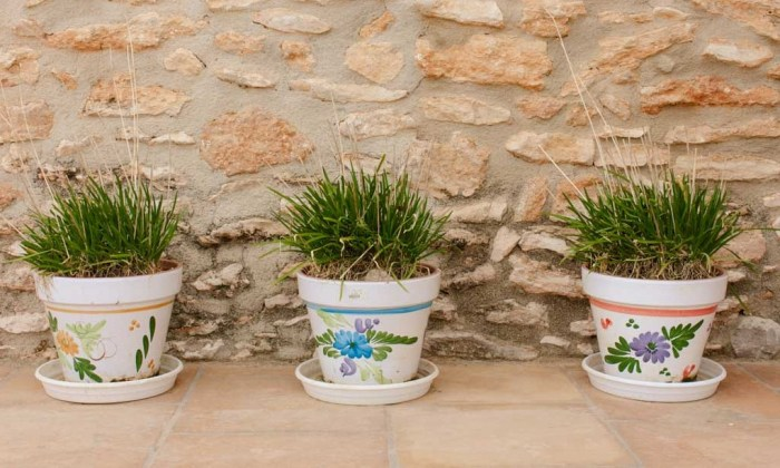 flowerpots outside Spanish farmhouse working holidays