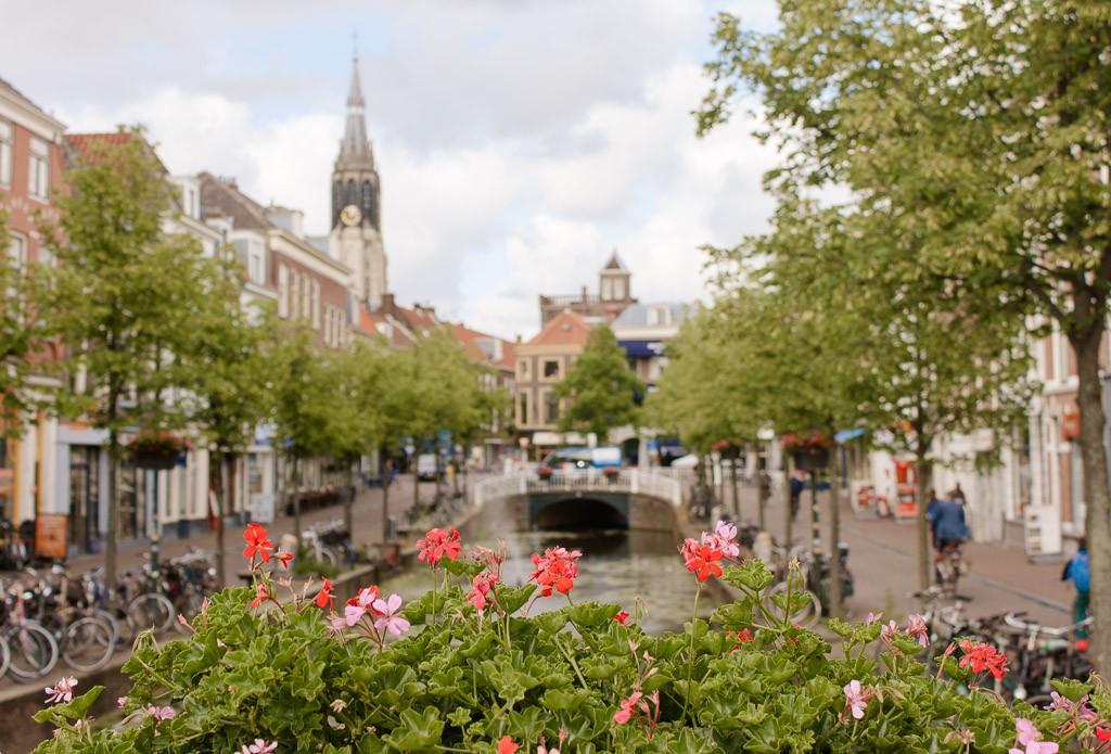 Delf, Rotterdam Wellness Travel Guide