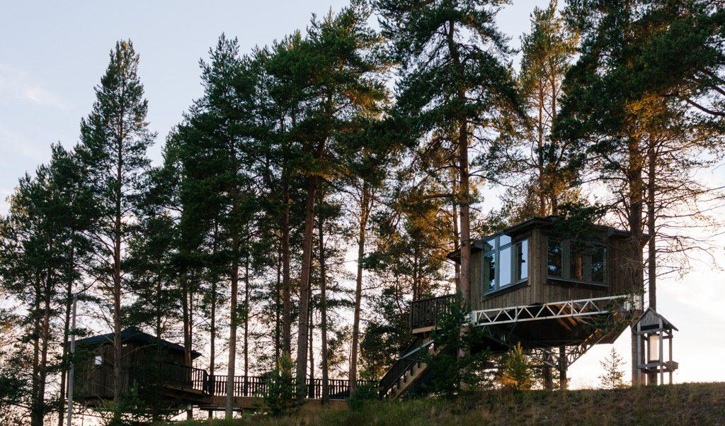 eco-wellness holidays and retreats