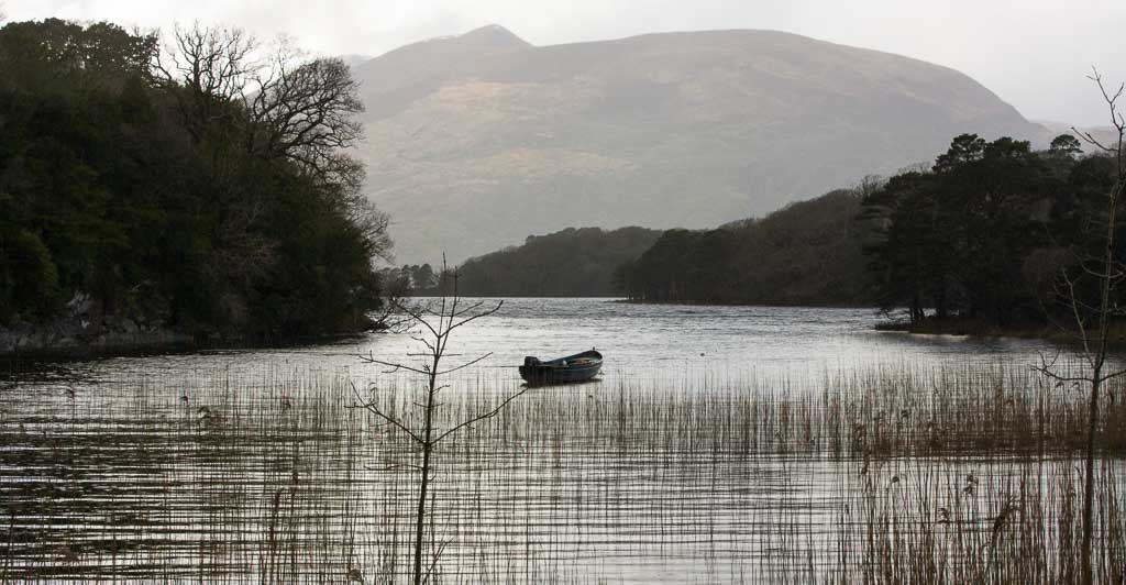 Things to do in Killarney - Muckross Boat Trip