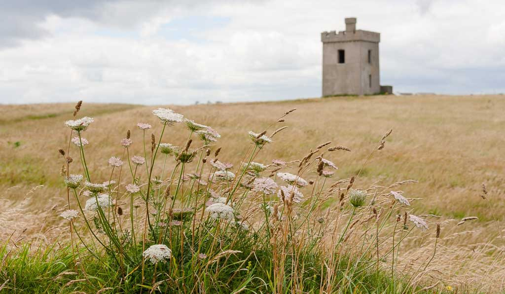 Ardmore Cliff Walk - Hiking Ireland's Ancient East