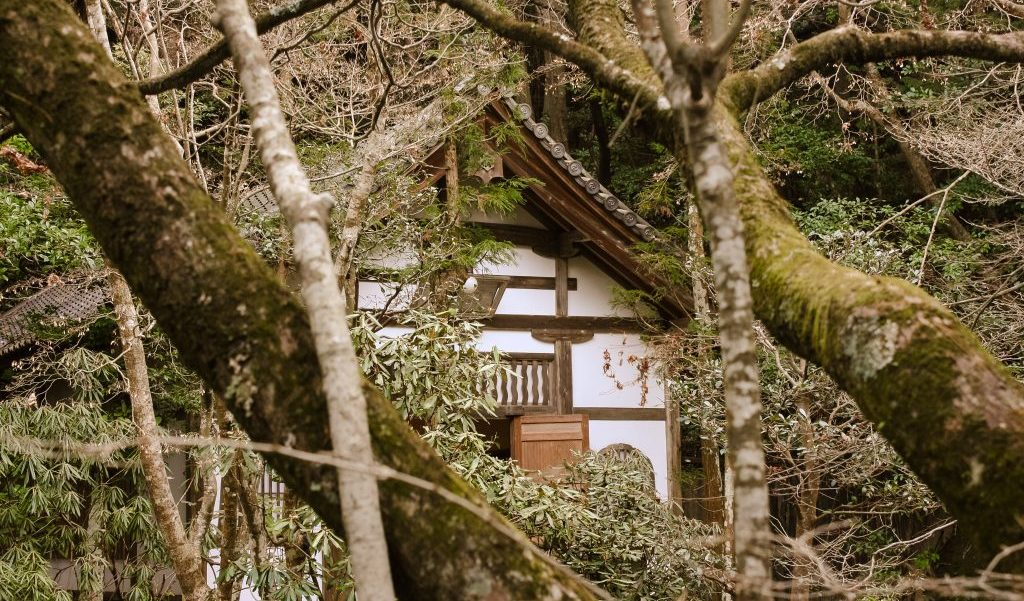 wellness holidays, Japan, wellness travel in 2017