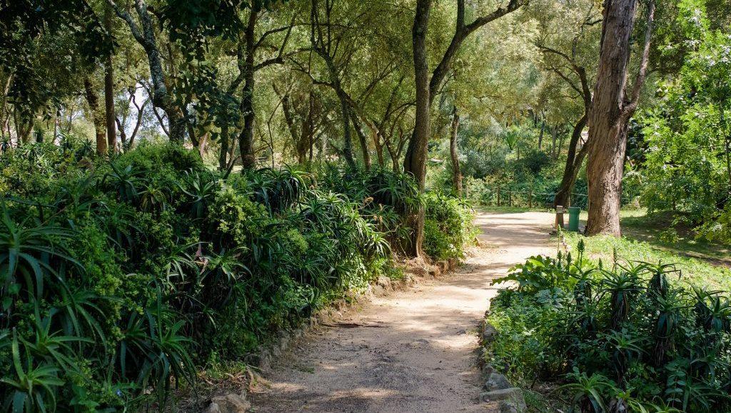 Parque Marechal Carmona things to do in Cascais
