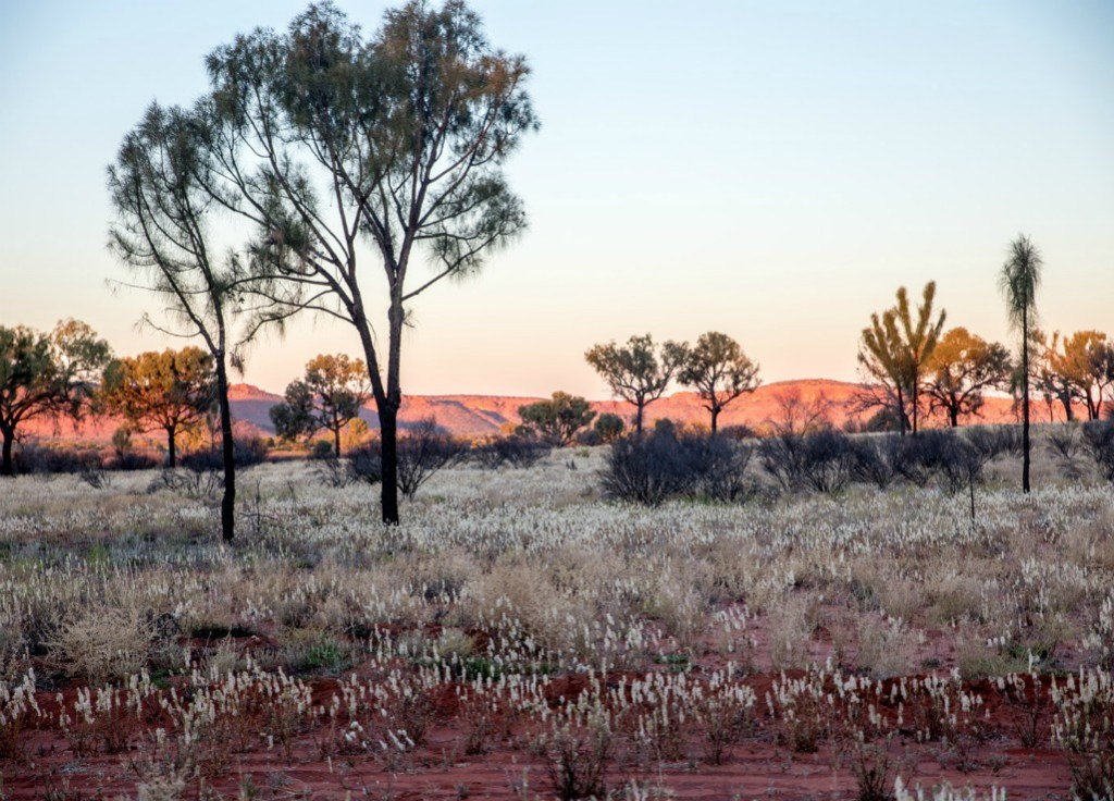 Watarrka, Australia, wellness travel