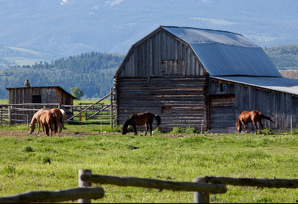 Things to do in Jackson Hole, Wyoming