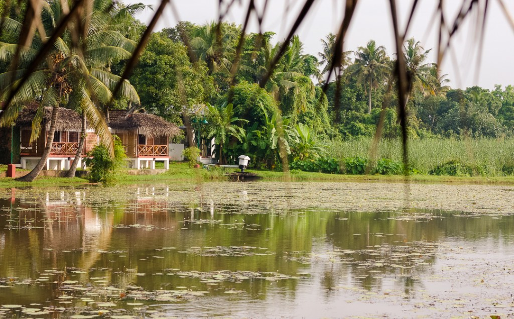 yoga in Kerala - Coconut Lagoon
