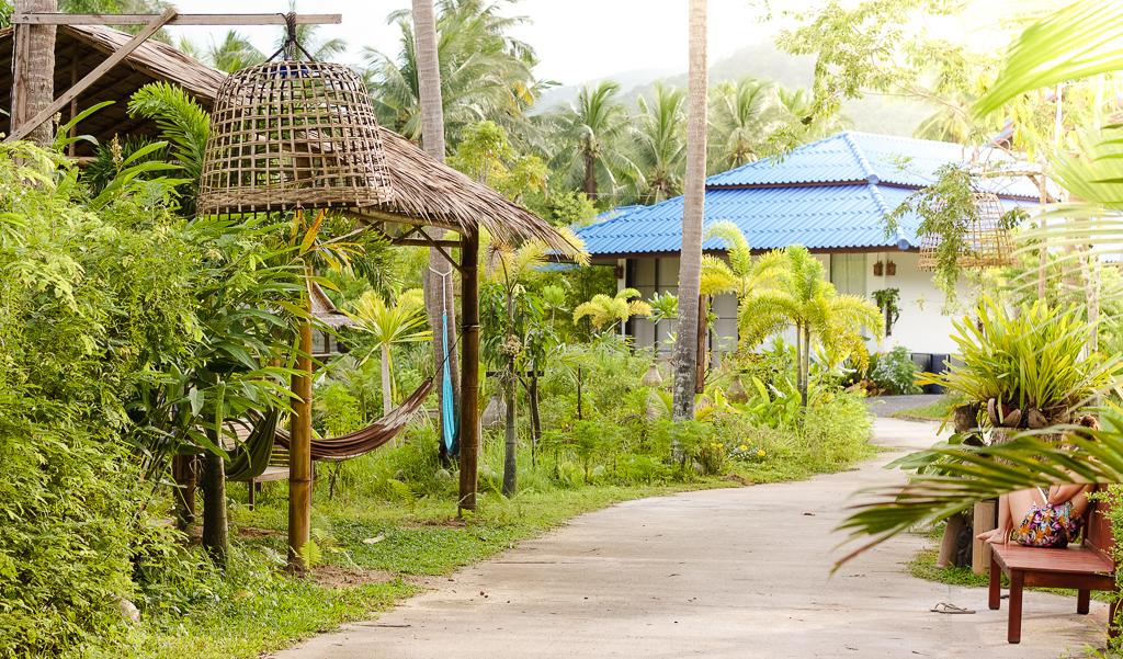 wonderland healing center, thailand