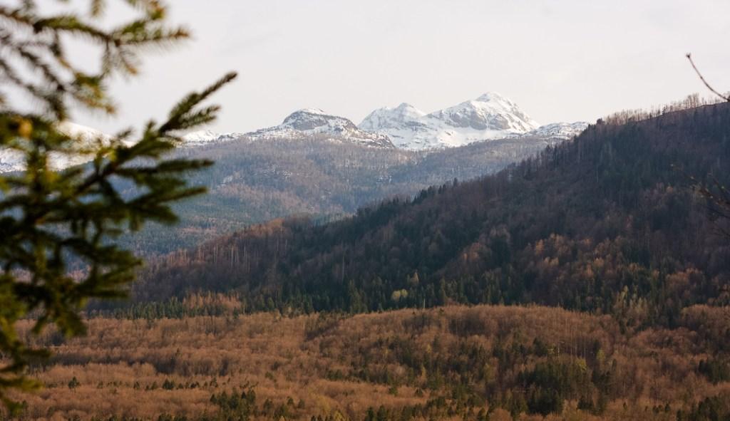 Bohinj, Mt Vogel