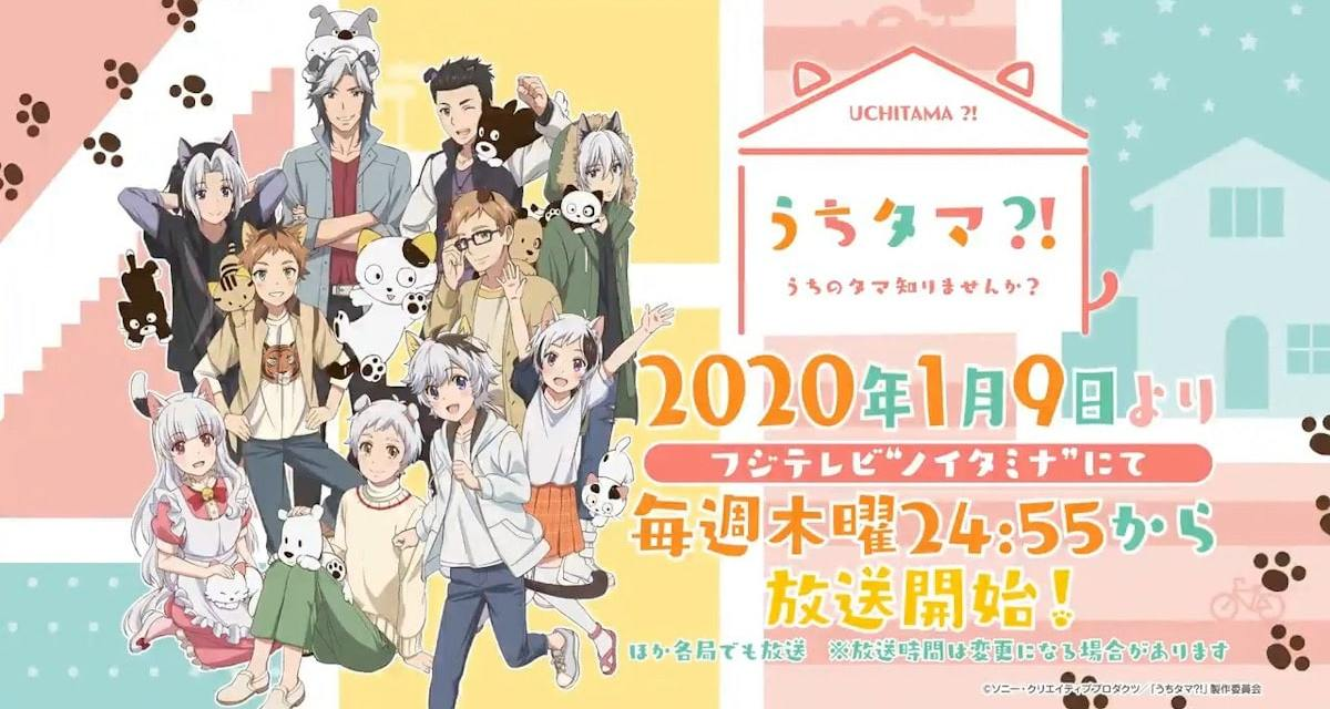 Uchitama?! Have you seen my Tama? Might Be The Cutest Anime In The Winter 2020 Line-Up