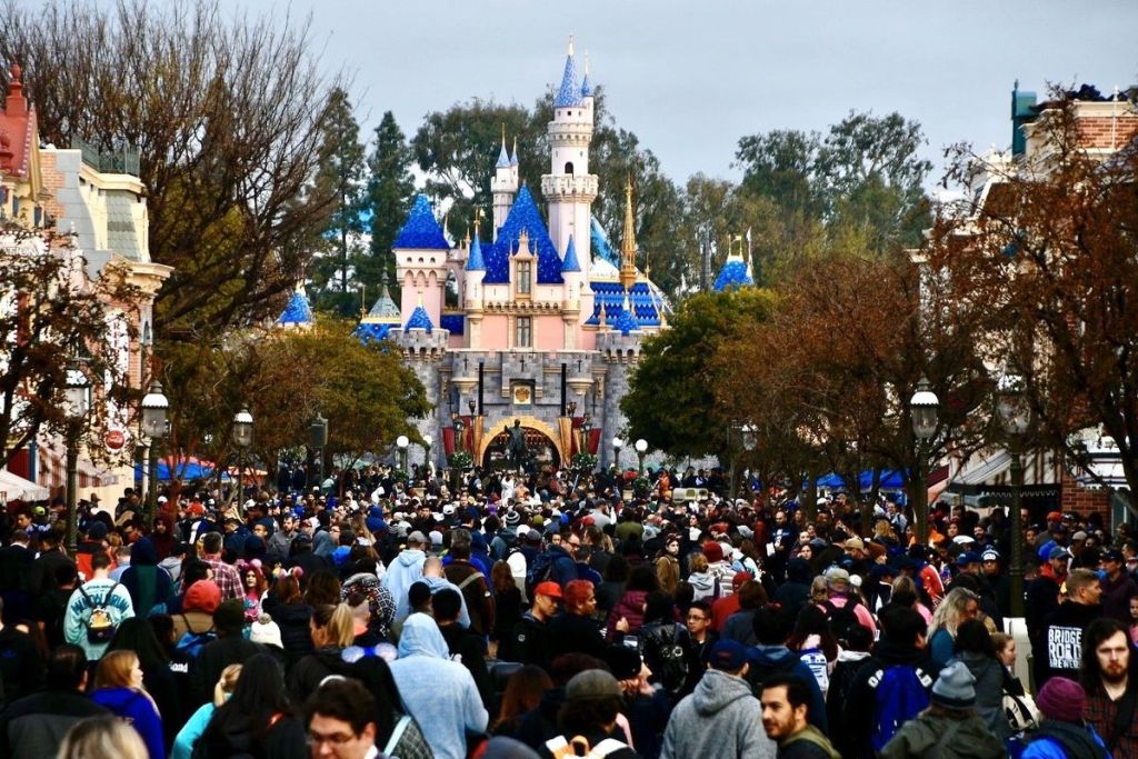 Disneyland Congestion