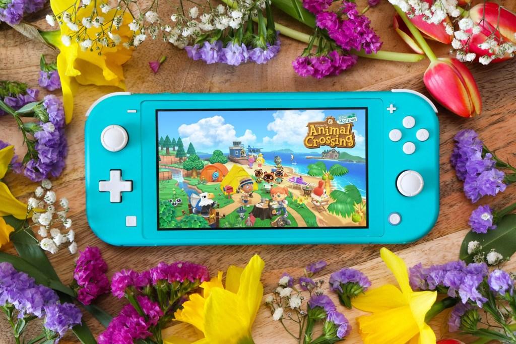 Video Games Nintendo Animal Crossing