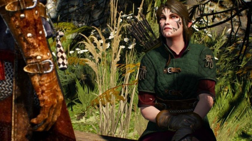 the witcher elves