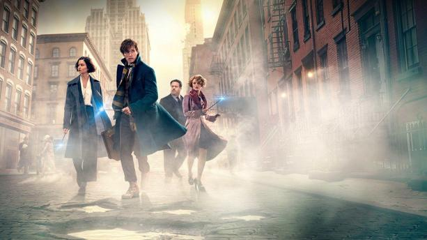 fantastic beasts and-where-to-find-them-wallpapers