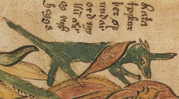Norse mythology Ratatoskr