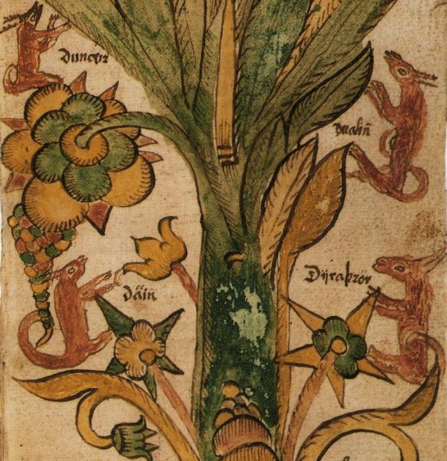 Norse mythology, Dáinn, Dvalinn, Duneyrr and Duraþrór