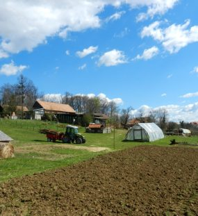The Green Pastures Beyond Zagreb