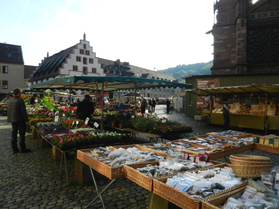 Freiburg, Minster Square