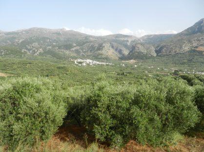 Hersonisos, Crete, Greece