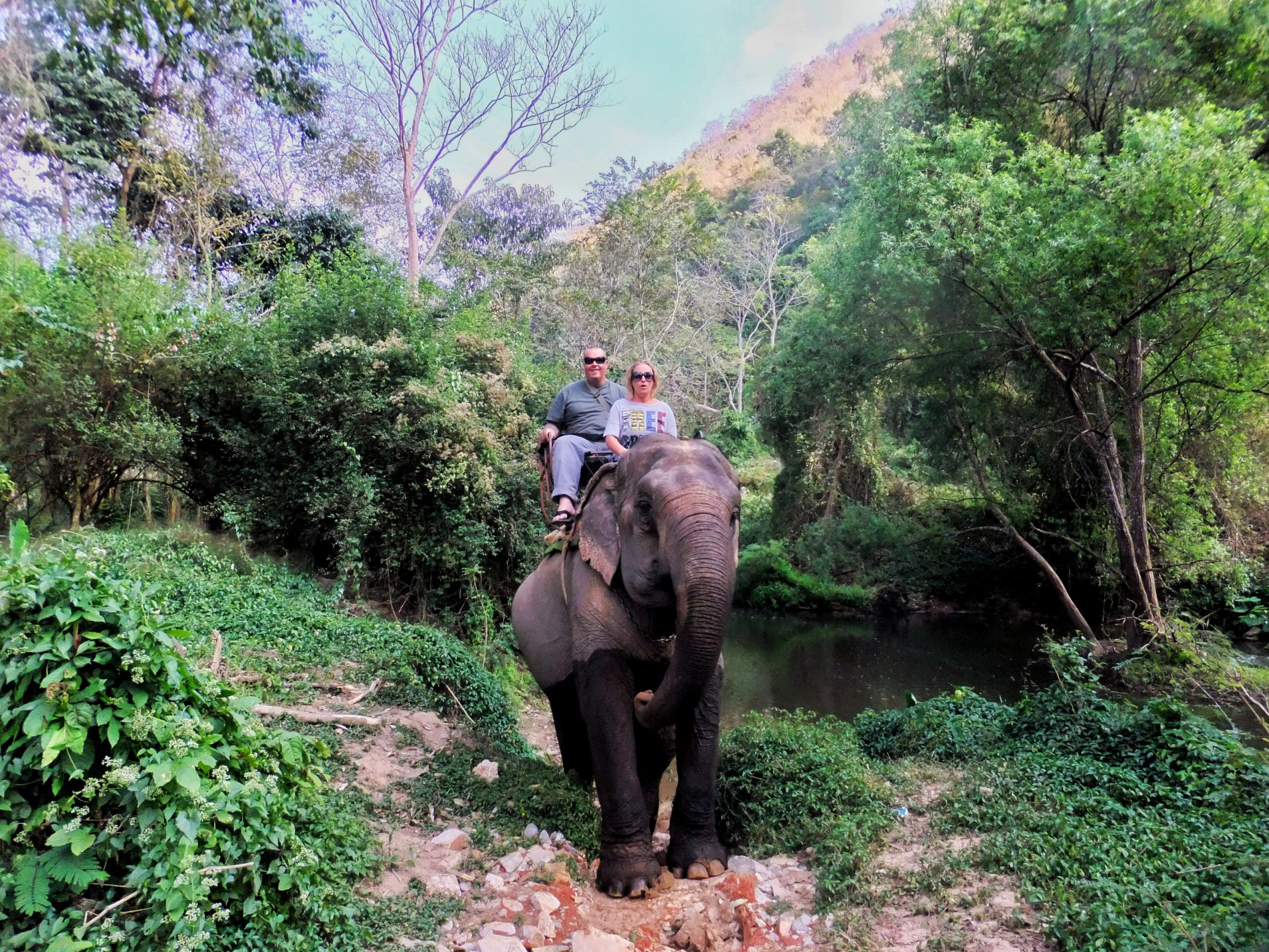 Riding Elephants in Khao Yai