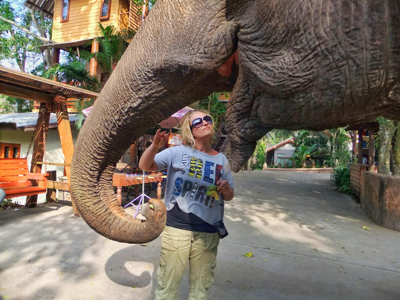 Riding Elephants in Khao Yai