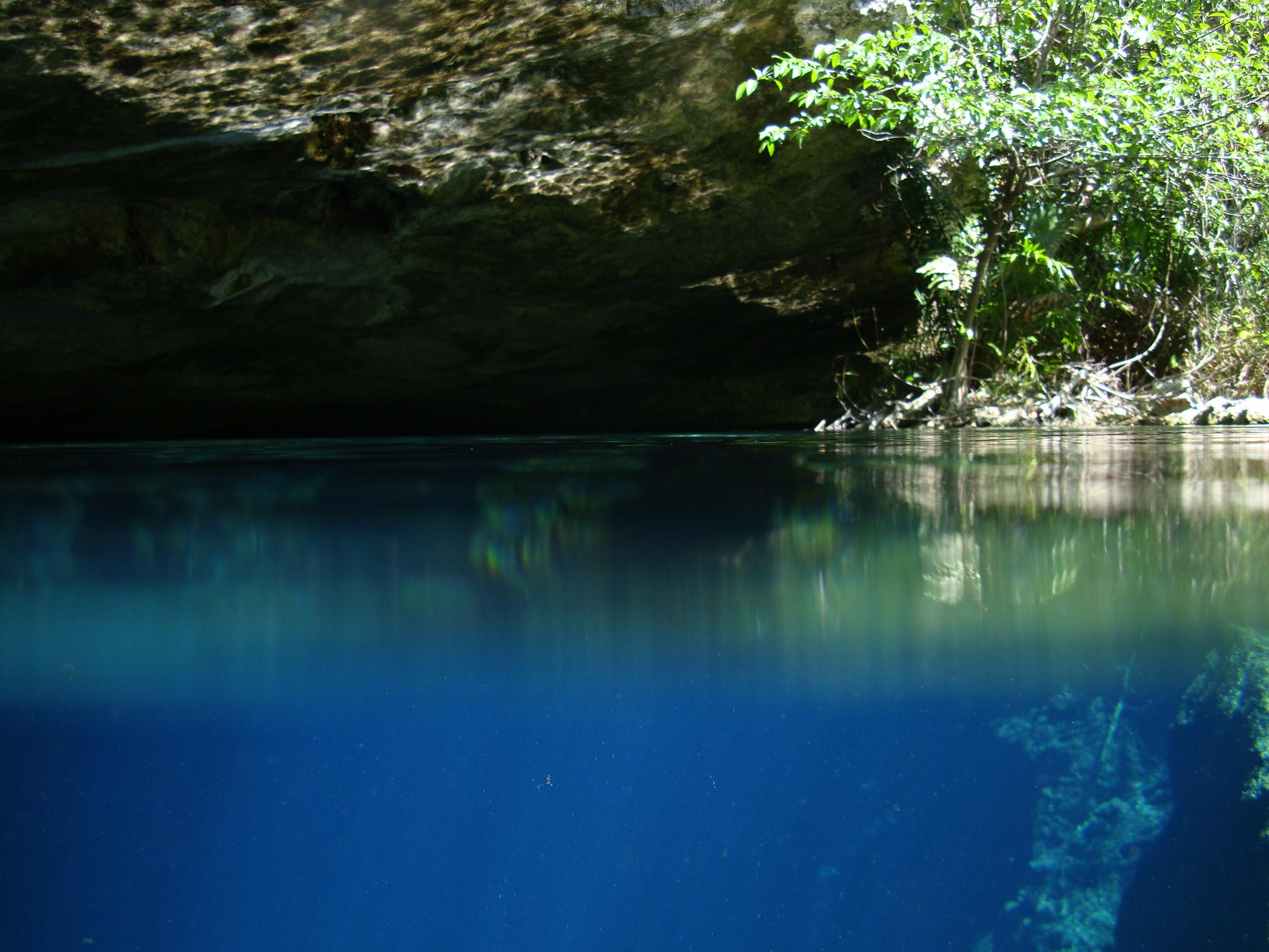 Cenote Diving In Playa Del Carmen