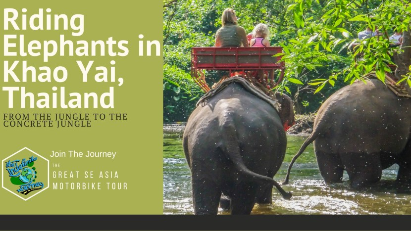 Riding Elephants in Khao Yai, Thailand – From the Jungle to the Concrete Jungle