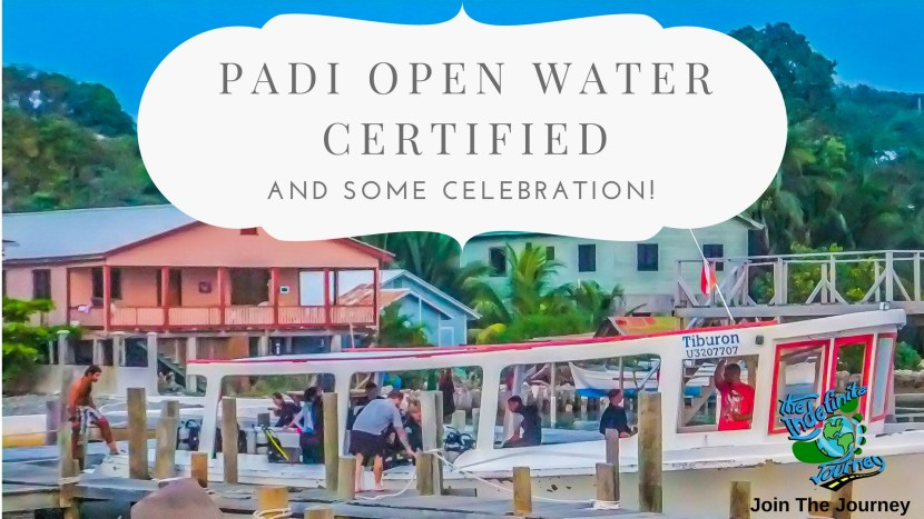 PADI Open Water Certified Divers and Some Celebration!