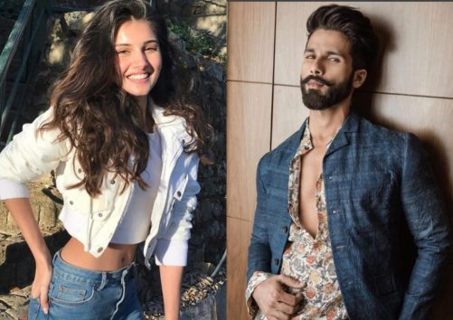 Wow Shahid Kapoor To Romance Tara Sutaria In This Love Story Film