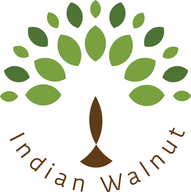 The Indian Walnut