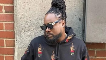 Wale - Sue Me (feat. Kelly Price)