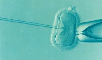 IVF Use Is Up — WAY Up