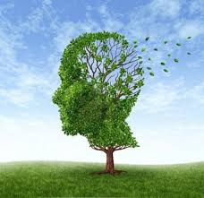 alzhemier's disease, symptoms,causes and control