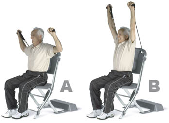 chair gym dvd set vintage eames lounge resistance workout routines strength exercises