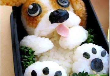 cute puppy bento