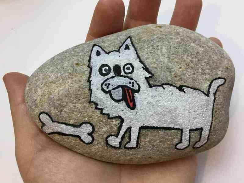 bichon rock stone