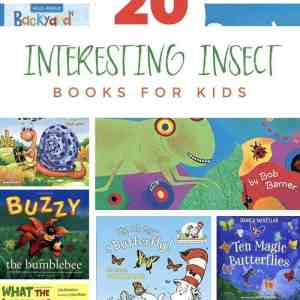 kids insects books