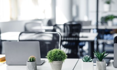 Add More Green to a Workspace
