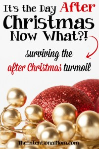 It's the Day After Christmas, Now What? Surviving the After Christmas Turmoil
