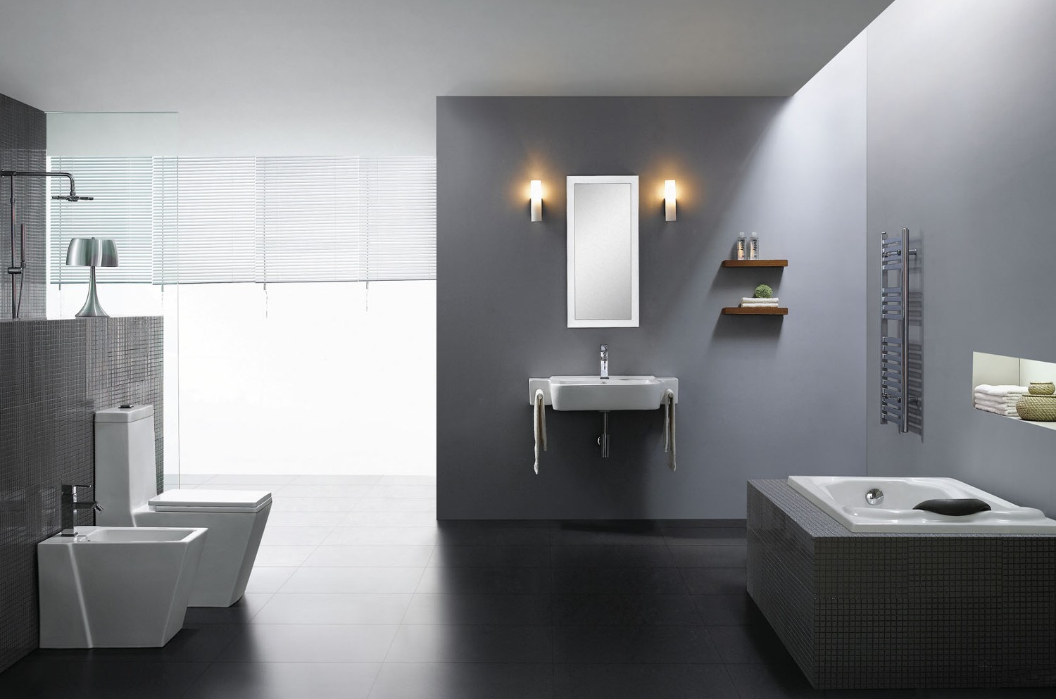 Medio Modern Bathroom Toilet